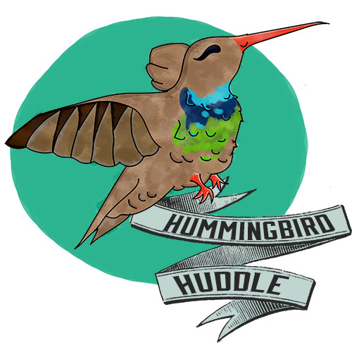 hummingbird_mascot_logo_icon